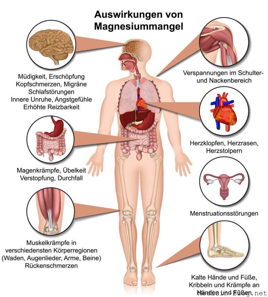 Auswirkungen Magnesiummangel